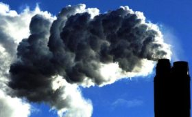 11% rise in companies reporting carbon emissions
