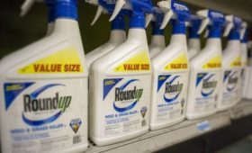 Five things to know about Bayer and Monsanto