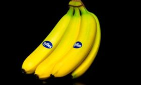 Fyffes' membership of workers' rights body terminated