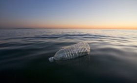 Reducing plastic is good business for some