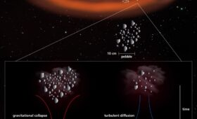 Primordial Asteroids That Never Suffered Massive Collisions all Seem to be Larger Than 100 km. Why?