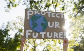 Irish family firms need to act on climate change – PwC